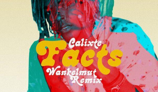 CALIXTE – Facts (Wankelmut Remix)